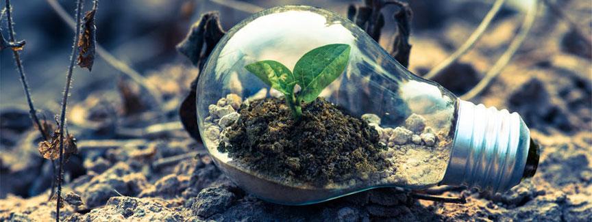 sostenibilita-ambiente